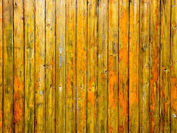 Stain vs. Paint - Which is Best on Fences